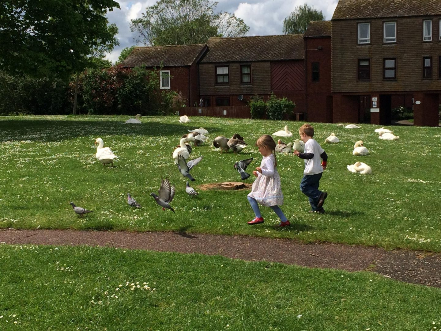 two childre outside in a field chasing birds on a playdate