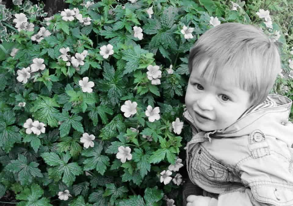 Little boy crouching by green bush with white flowers