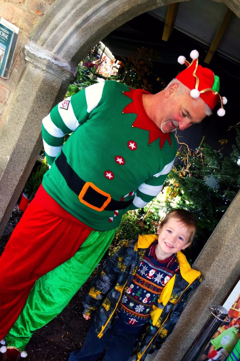 Little boy standing with a smiling elf