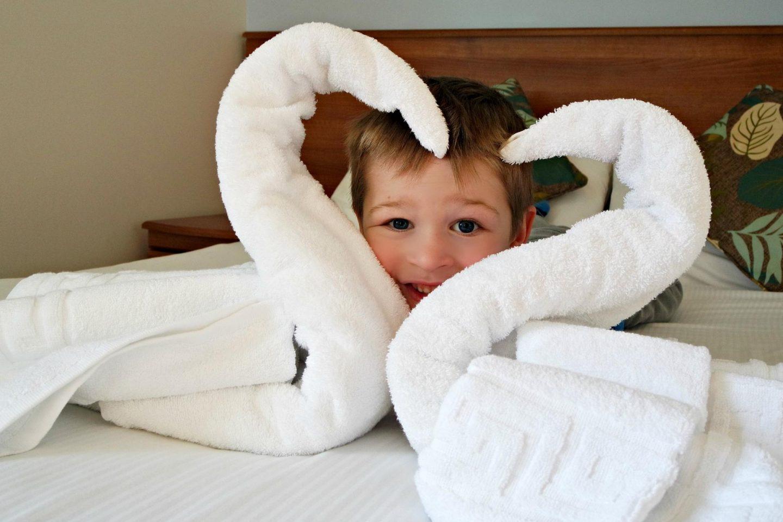 Butlins swans