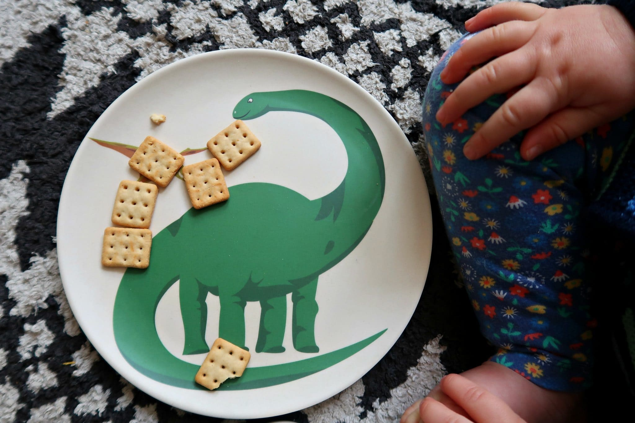 environmentally friendly living close up of dinosaur plate